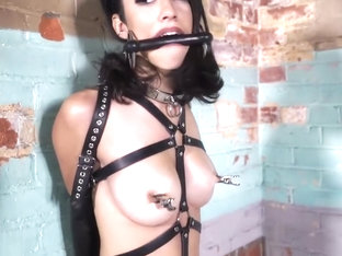 Leather bound simone