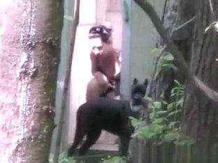 nackt gorillers sex