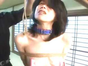 Japanese BDSM Girl in stockings, tied, vibed and toyed.